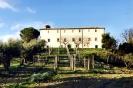 Foto di Castelplanio-1