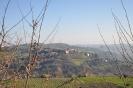 Foto di Castelplanio-22